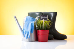 Garden care Stock Photos