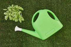 Garden Care. A studio photo of a garden equipment of artificial turf Royalty Free Stock Image