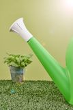Garden Care. A studio photo of a garden equipment of artificial turf Stock Photos