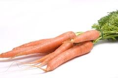 Garden carrots Royalty Free Stock Photography