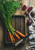 Garden carrots and beetroots in wooden tray over rustic background stock image