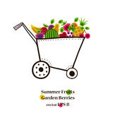 Garden cart with bright summer fruits and berries Royalty Free Stock Photo