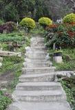 Garden cement stair Stock Photo