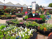 Garden center. Royalty Free Stock Image