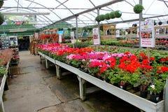Garden center Royalty Free Stock Photography