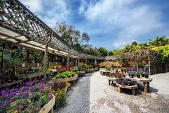 A garden center in Cornwall, UK. Stock Photos