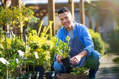 Garden Center Employee Stock Images