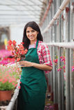 Garden center employee standing and holding flower pot Royalty Free Stock Photo