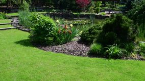 Garden center in the spring time. Horticulture. stock video footage