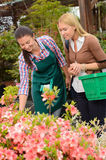 Garden center woman help customer choose flowers Stock Photos