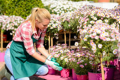 Garden center woman kneeling by potted flowers Royalty Free Stock Images