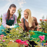 Garden center worker give advice woman customer Stock Photography