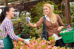 Garden center worker selling potted flower customer Stock Image