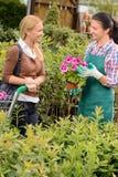Garden center worker selling potted flower customer Stock Photos