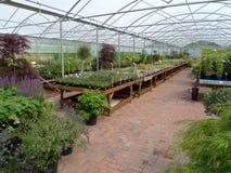 Garden centre. Interior view of garden centre Royalty Free Stock Images