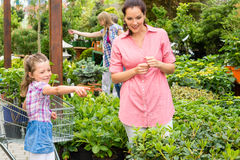 Garden centre child mother at plant market Stock Images