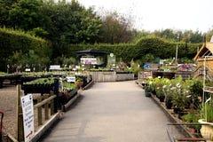 Garden centre. Stock Image