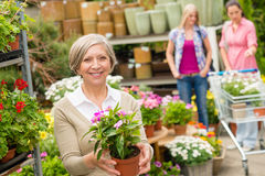 Garden centre senior lady hold potted flower Stock Images