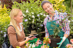 Garden centre woman worker selling potted plant. Garden centre women worker selling potted plant to female customer Stock Photography