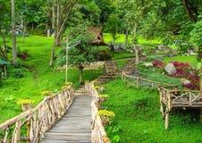 The garden in chaing mai. Thailand Stock Photos
