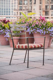 Garden Chair. Rooftop garden chair surrounded by colorful spring flowers vases Stock Photos