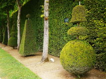 Garden Chateau de Versailles Stock Photography