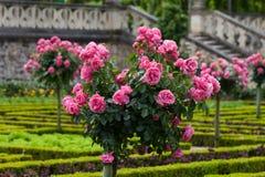 Garden in Chateau de Villandry. stock photography