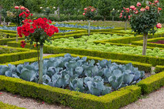 garden in Chateau de Villandry royalty free stock photo