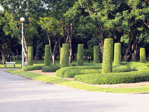 Garden in Chatuchak public park Stock Photos