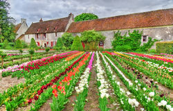 Garden at the Chenonceau Castle in the Loire Valley of France Stock Photos