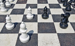 Garden chess Royalty Free Stock Images