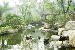 The garden in China Royalty Free Stock Images