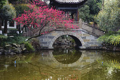 The garden of chinese style Stock Images