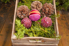 Garden Christmas decoration royalty free stock images