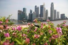 Garden city. Singapore-Truly a garden city stock images