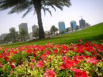 Garden city. View of Sharjah city stock images