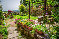 Garden in the city full of flowers Royalty Free Stock Image