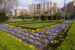 Garden City. Public park or garden with flowers and hedges city surrounded by buildings in spring royalty free stock image