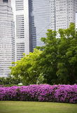 Garden City Singapore Royalty Free Stock Image