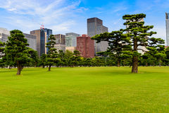 Garden in City Royalty Free Stock Image