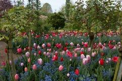 Garden 12. Colourful garden beds with an abundance of beautiful flowers Stock Photography