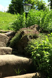 Garden composition with old sandstone stairs and aromatic herbs. Eco country garden stock images