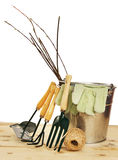 Garden composition with seedlings and tools isolated over white Royalty Free Stock Images