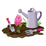 Garden composition with watering can and flower Stock Image
