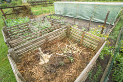 Garden Compost Bin. Compost bin in a vegetable garden patch Royalty Free Stock Photo