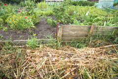 Garden Compost Bin. Compost bin in a vegetable garden patch Royalty Free Stock Photography