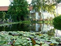Garden conservatory stock photo