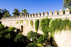Garden in Cordoba Stock Photography