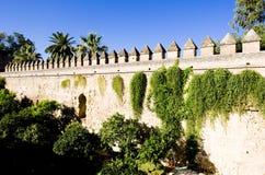 Garden in Cordoba. The gardens of the Alcazar of Catholic Kings, Cordoba, Andalusia, Spain Stock Photography