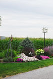 Garden and corn crop in Amish country Royalty Free Stock Photography